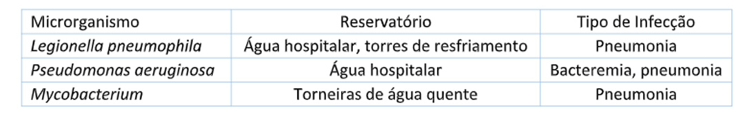 Exemplos de bactérias que causam surtos hospitalares relacionados à água