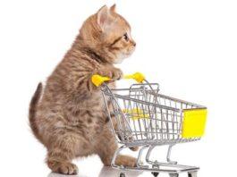 Crescimento do mercado pet comprova a importância do sistema de gestão