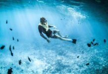Dicas de destinos para quem gosta de mergulhar