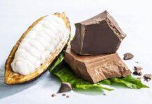 Chocolate 100% cacau inova fabricação após séculos e mira no consumo sustentável