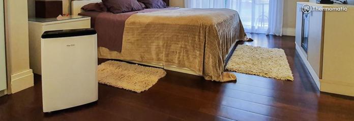 Umidade-por que evitar o bolor dentro de casa